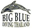Big blue diving